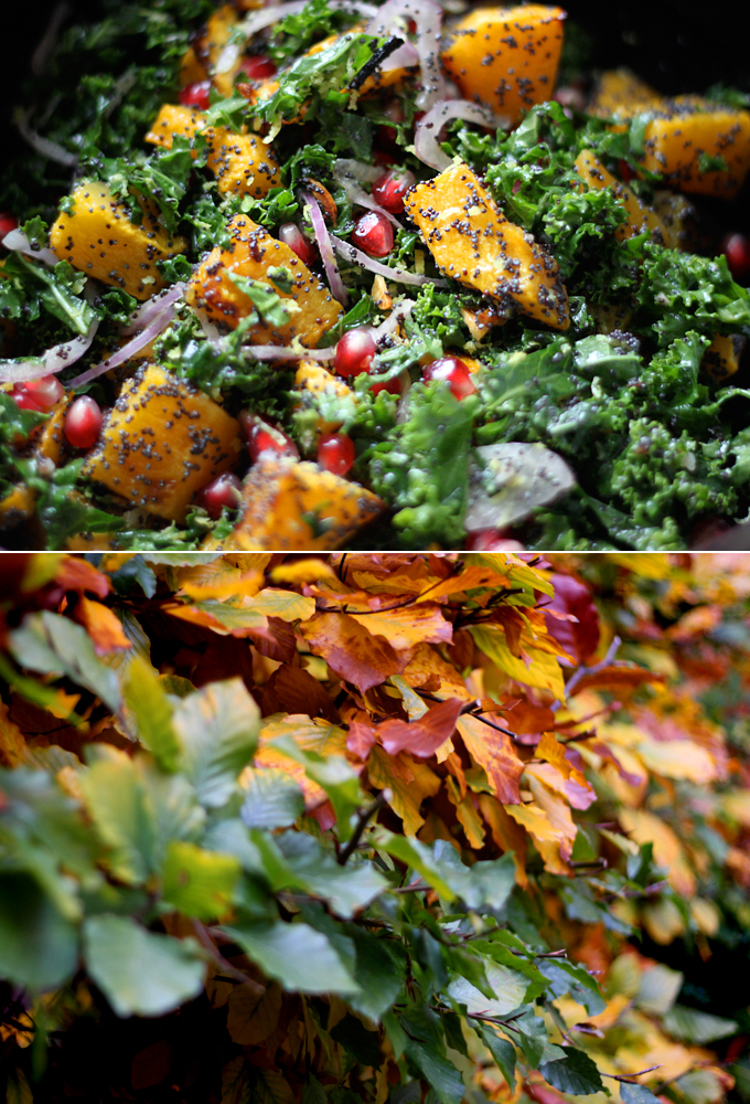 Poppy Seed-Crusted Butternut Squash with Kale and Pomegranates - My ...
